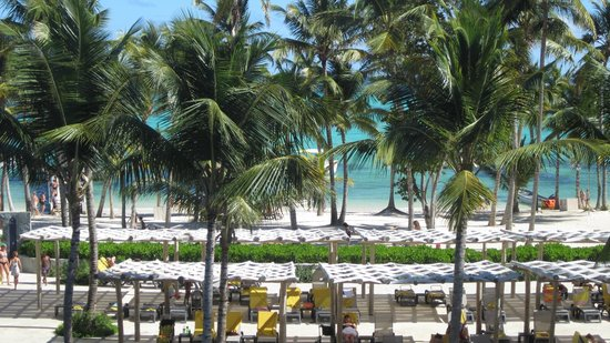 Barcelo Bavaro Beach - Adults Only:                   beach