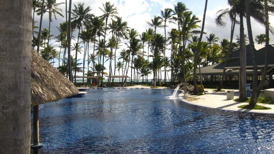 Barcelo Bavaro Beach - Adults Only:                   pool