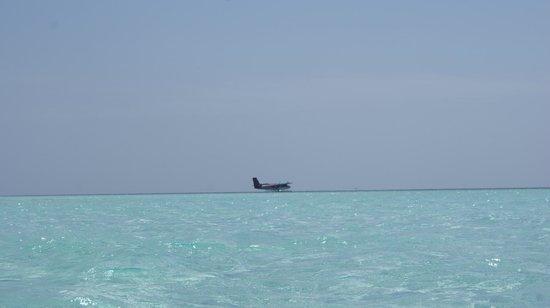 Constance Moofushi:                   seaplan widok z willi