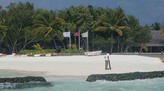 Constance Moofushi:                   plaża przy recepcji