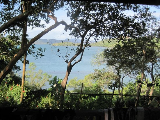 Discovery Island Resort and Dive Center:                   view from native cottage