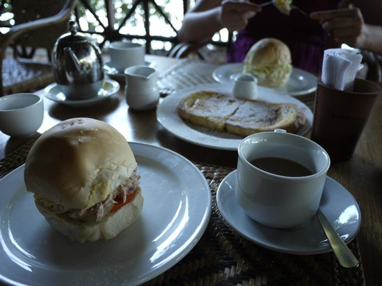 Discovery Island Resort and Dive Center:                   great breakfast