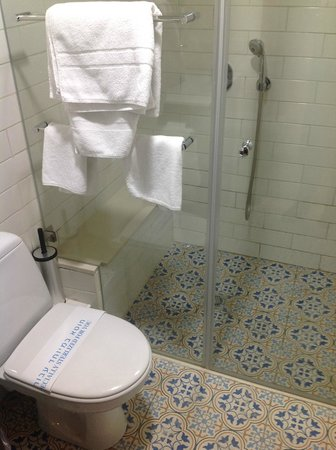 The Embassy Hotel Tel Aviv: Shower (ample space and great shower).