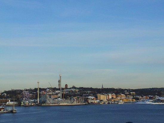 Fjällgatan: View