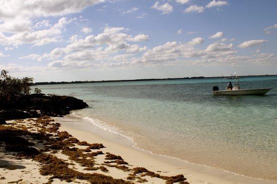 Kamalame Cay:                                                       snorkel trip