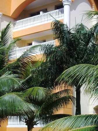 Iberostar Rose Hall Suites:                                     Looking up from beach
