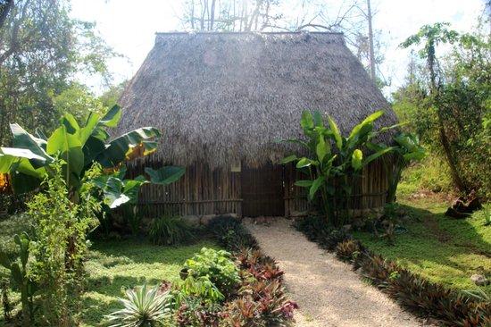 Hacienda Chichen:                   naturalists home