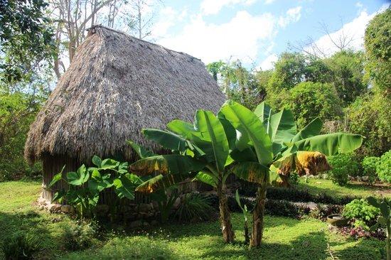 Hacienda Chichen:                   grounds