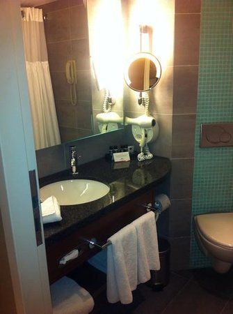 Crowne Plaza Amsterdam City Centre:                   lovely bathroom, want to take heated mirror home :)