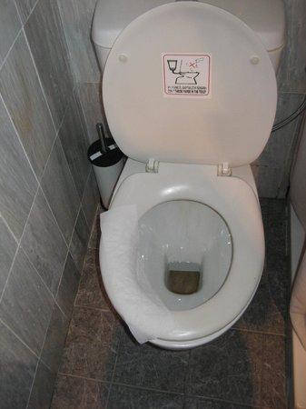 Alesahne Beach Hotel :                   toilet