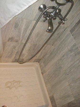 Alesahne Beach Hotel:                   shower