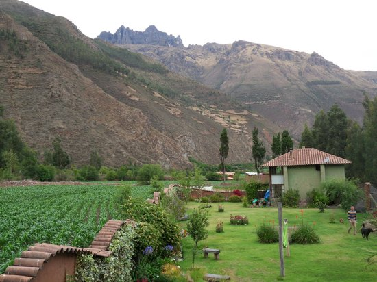 The Green House Peru:                   View from our door, looking at the grounds and mountains.