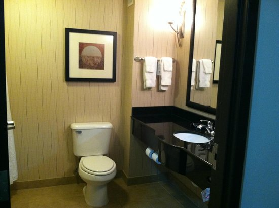 Holiday Inn Hotel & Suites Tulsa South: Bathroom