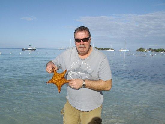 Azul Beach Resort Sensatori Jamaica by Karisma:                   starfish found on beach