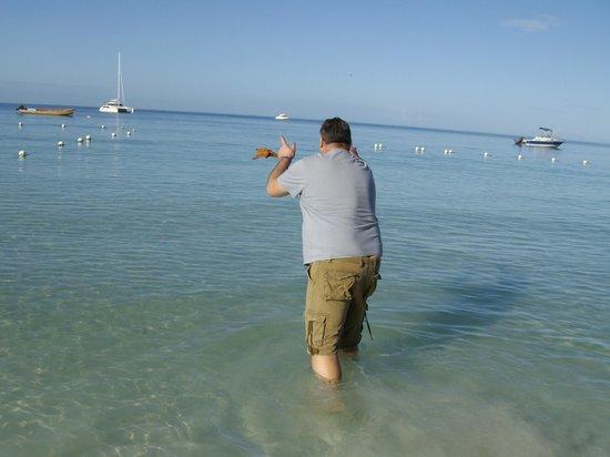 Azul Beach Resort Sensatori Jamaica by Karisma:                   tossing back starfish