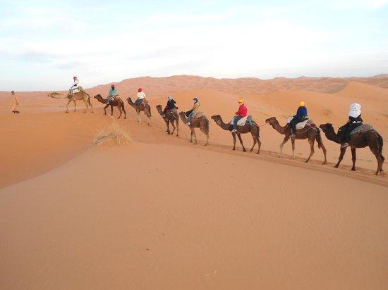 Morocco Sahara 4x4 - Day Tours:                   Andando de camello en el desierto!