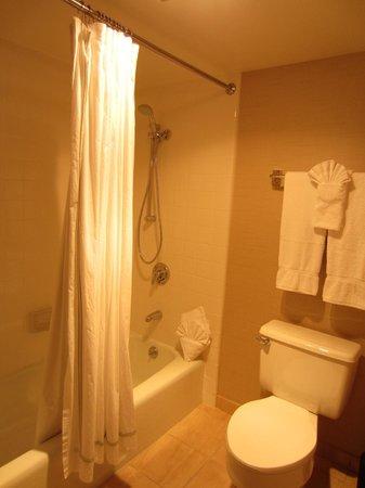 Cupertino Hotel: Vista a la bañera