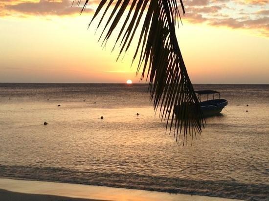 Bananarama Beach and Dive Resort :                   coucher de soleil 17h40