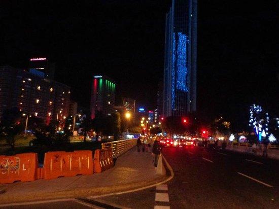 Hotel Tequendama: Panoramica della zona hotel