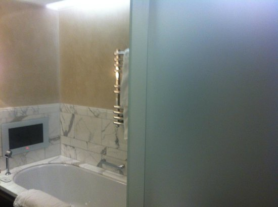 Corinthia Hotel London:                                     Ensuite view 2