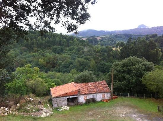 Hotel rural la Biesca:                   vista desde la habitación