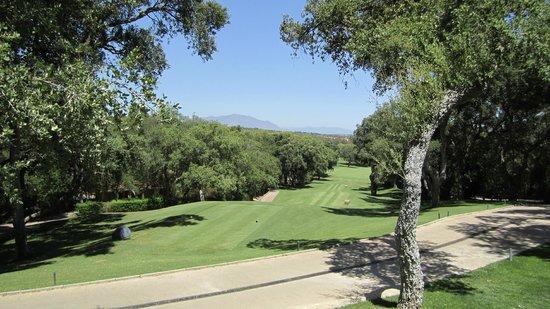 Real Club Valderrama:                   Valderrama Golf Course