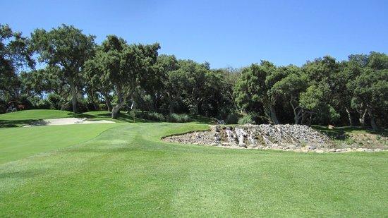 Real Club Valderrama:                   Valderrama Golf Course 4th hole
