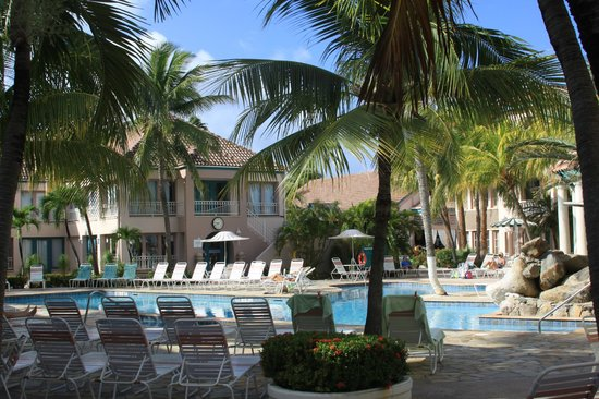 Caribbean Palm Village Resort:                   Morning by the pool