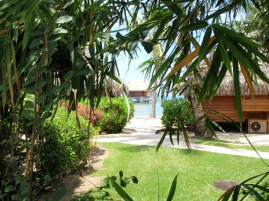 Manava Beach Resort & Spa - Moorea:                   View from Garden room