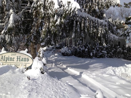 Alpine Haus Bed and Breakfast Inn:                   Winter Storm Nemo
