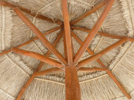Park Royal Cancun:                   The hut we were under
