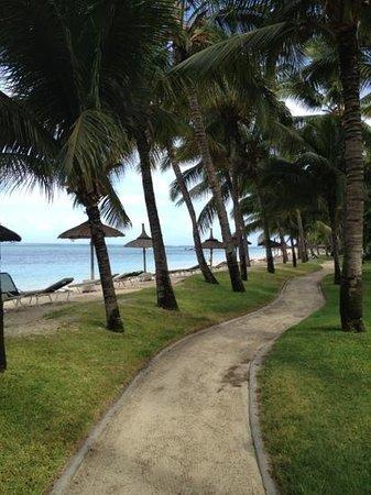Sugar Beach Golf & Spa Resort :                   chemin à l'ombre