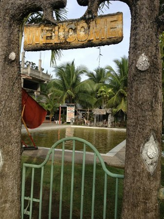 D'Leopard's Beach Resort and Hotel:                   The disgusting pool.