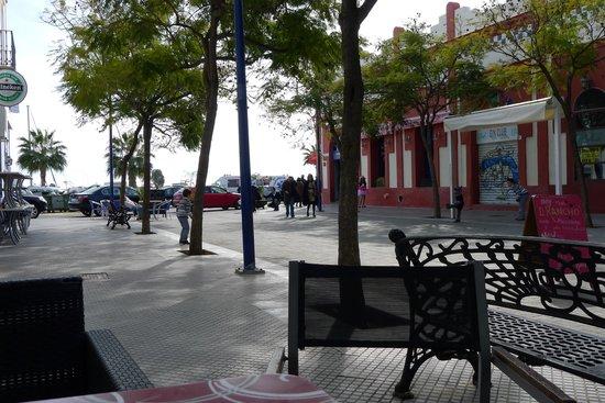 Cafe Bar Lotita:                   View around