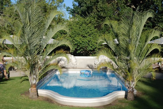 Schoone Oordt Country House:                   La piscine