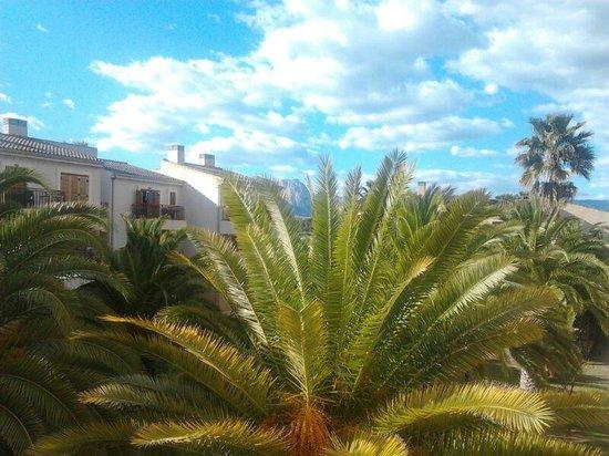 Albir Garden Resort:                   bonita vista