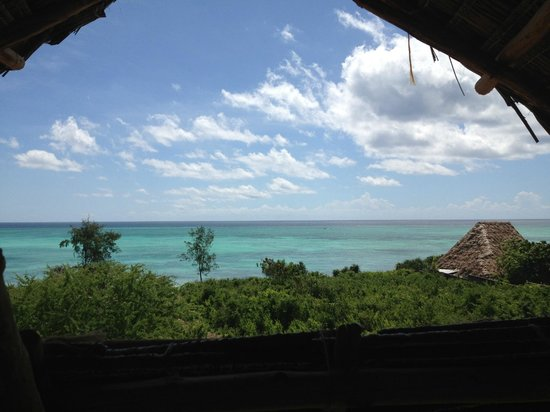Mabwe Roots Bungalows:                   view from the restaurant