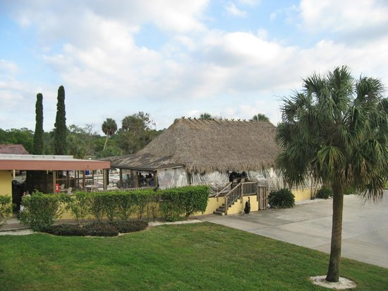 Quality Inn and Suites Golf Resort: The Tiki Bar from our room with karaoke until 11pm