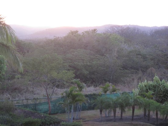 JW Marriott Guanacaste Resort & Spa:                   Sunrise from the balcony of a room in the back.