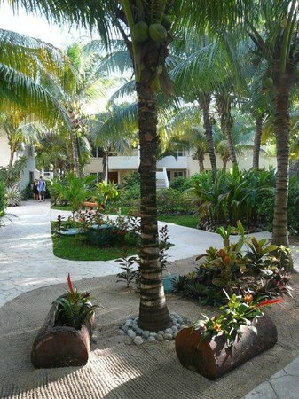 El Dorado Sensimar Riviera Maya: Well-tended grounds