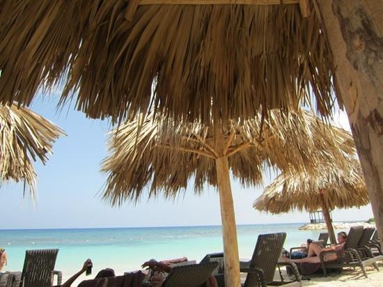 Secrets Wild Orchid Montego Bay:                   Strandabschnitt
