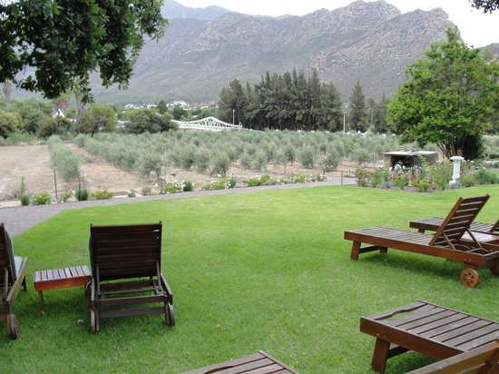 Montagu Vines Guesthouse :                   View from grounds