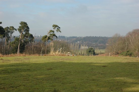 Sutton Hoo: View over the Deben river valley