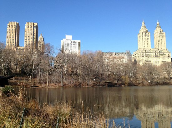 central park picture of real new york tours new york city tripadvisor. Black Bedroom Furniture Sets. Home Design Ideas