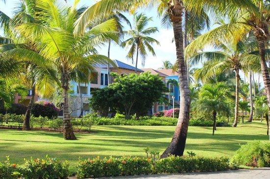 Ocean Blue & Sand:                   Jardines y villas