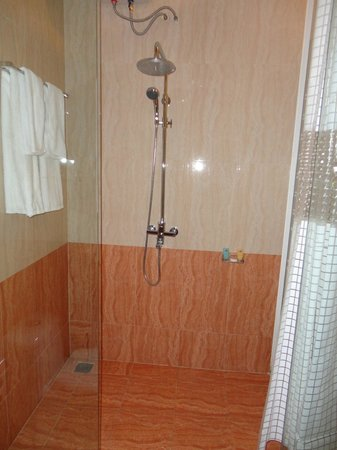 Satisfy Hotel: Shower in the room
