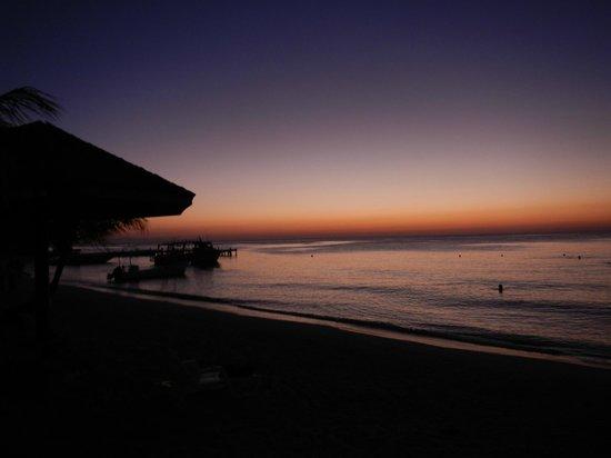 Paradise Beach Hotel:                   Beach