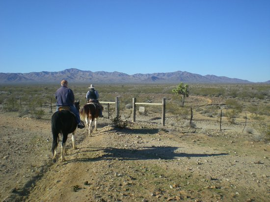 Stagecoach Trails Guest Ranch:                   Starting out on our first trail ride.