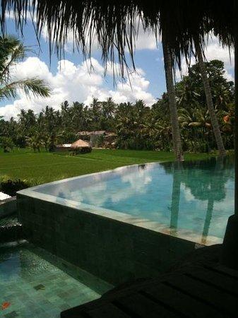 Mathis Retreat:                   pool area
