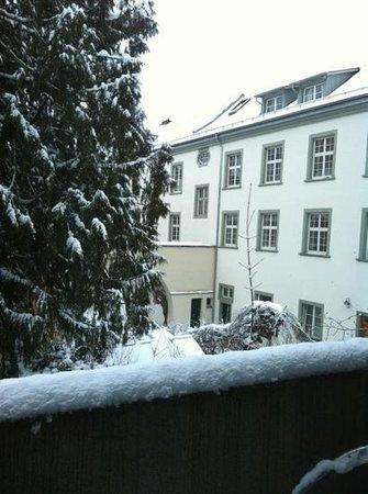 Hotel Seerose Lindau :                   vista dalla stanza